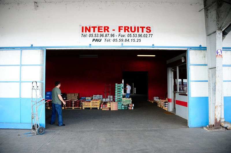 INTER FRUITS Sarl